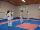Kumite Workshop mit dem Landestrainer im vereinseigenen Dojo 2017_102