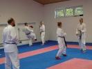 Kumite Workshop mit dem Landestrainer im vereinseigenen Dojo 2017_103