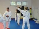 Kumite Workshop mit dem Landestrainer im vereinseigenen Dojo 2017_105