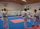 Kumite Workshop mit dem Landestrainer im vereinseigenen Dojo 2017_106