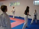 Kumite Workshop mit dem Landestrainer im vereinseigenen Dojo 2017_107