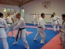 Kumite Workshop mit dem Landestrainer im vereinseigenen Dojo 2017_109