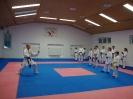 Kumite Workshop mit dem Landestrainer im vereinseigenen Dojo 2017_10