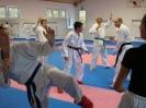 Kumite Workshop mit dem Landestrainer im vereinseigenen Dojo 2017_112