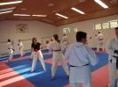 Kumite Workshop mit dem Landestrainer im vereinseigenen Dojo 2017_114