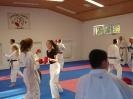 Kumite Workshop mit dem Landestrainer im vereinseigenen Dojo 2017_119