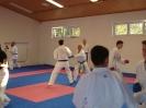 Kumite Workshop mit dem Landestrainer im vereinseigenen Dojo 2017_120