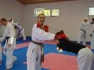 Kumite Workshop mit dem Landestrainer im vereinseigenen Dojo 2017_122