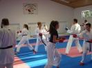 Kumite Workshop mit dem Landestrainer im vereinseigenen Dojo 2017_126