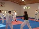 Kumite Workshop mit dem Landestrainer im vereinseigenen Dojo 2017_128