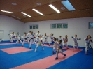 Kumite Workshop mit dem Landestrainer im vereinseigenen Dojo 2017_12