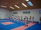 Kumite Workshop mit dem Landestrainer im vereinseigenen Dojo 2017_13