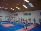 Kumite Workshop mit dem Landestrainer im vereinseigenen Dojo 2017_14