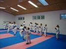 Kumite Workshop mit dem Landestrainer im vereinseigenen Dojo 2017_15