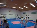 Kumite Workshop mit dem Landestrainer im vereinseigenen Dojo 2017_17