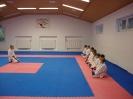 Kumite Workshop mit dem Landestrainer im vereinseigenen Dojo 2017_1