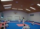 Kumite Workshop mit dem Landestrainer im vereinseigenen Dojo 2017_22