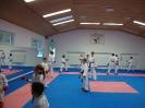 Kumite Workshop mit dem Landestrainer im vereinseigenen Dojo 2017_25
