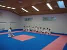 Kumite Workshop mit dem Landestrainer im vereinseigenen Dojo 2017_2