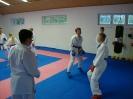 Kumite Workshop mit dem Landestrainer im vereinseigenen Dojo 2017_30