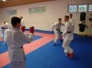 Kumite Workshop mit dem Landestrainer im vereinseigenen Dojo 2017_31