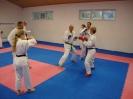 Kumite Workshop mit dem Landestrainer im vereinseigenen Dojo 2017_32