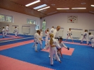 Kumite Workshop mit dem Landestrainer im vereinseigenen Dojo 2017_39