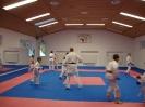 Kumite Workshop mit dem Landestrainer im vereinseigenen Dojo 2017_3