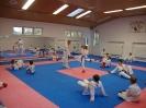 Kumite Workshop mit dem Landestrainer im vereinseigenen Dojo 2017_40