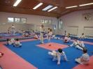 Kumite Workshop mit dem Landestrainer im vereinseigenen Dojo 2017_41