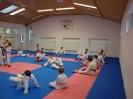 Kumite Workshop mit dem Landestrainer im vereinseigenen Dojo 2017_42