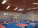 Kumite Workshop mit dem Landestrainer im vereinseigenen Dojo 2017_43