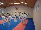 Kumite Workshop mit dem Landestrainer im vereinseigenen Dojo 2017_45