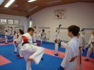 Kumite Workshop mit dem Landestrainer im vereinseigenen Dojo 2017_46