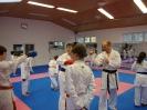 Kumite Workshop mit dem Landestrainer im vereinseigenen Dojo 2017_47