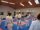 Kumite Workshop mit dem Landestrainer im vereinseigenen Dojo 2017_48