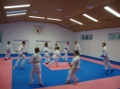 Kumite Workshop mit dem Landestrainer im vereinseigenen Dojo 2017_4