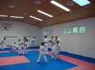 Kumite Workshop mit dem Landestrainer im vereinseigenen Dojo 2017_52