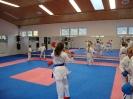 Kumite Workshop mit dem Landestrainer im vereinseigenen Dojo 2017_57