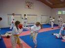 Kumite Workshop mit dem Landestrainer im vereinseigenen Dojo 2017_58