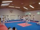 Kumite Workshop mit dem Landestrainer im vereinseigenen Dojo 2017_59