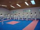 Kumite Workshop mit dem Landestrainer im vereinseigenen Dojo 2017_60