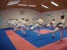 Kumite Workshop mit dem Landestrainer im vereinseigenen Dojo 2017_61