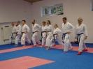 Kumite Workshop mit dem Landestrainer im vereinseigenen Dojo 2017_62