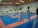 Kumite Workshop mit dem Landestrainer im vereinseigenen Dojo 2017_65