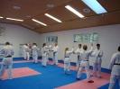 Kumite Workshop mit dem Landestrainer im vereinseigenen Dojo 2017_66