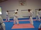 Kumite Workshop mit dem Landestrainer im vereinseigenen Dojo 2017_70