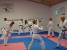 Kumite Workshop mit dem Landestrainer im vereinseigenen Dojo 2017_72