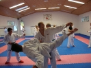 Kumite Workshop mit dem Landestrainer im vereinseigenen Dojo 2017_74