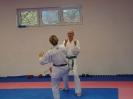 Kumite Workshop mit dem Landestrainer im vereinseigenen Dojo 2017_79